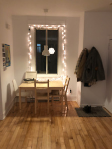 Newly Renovated Bright 3 1/2 in the Mile End
