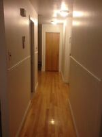 5 1/2 upper duplex for rent Montreal-Nord