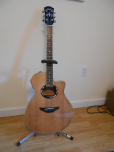 Yamaha 50th anniversary guitar and case