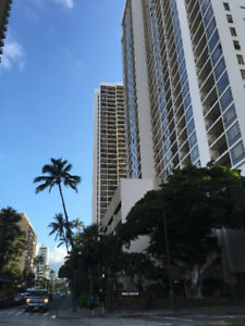 Beach Vacation! Condo in Waikiki - Avail Dec. 22 - Jan. 5, 2019
