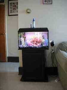want to trade 3 fish tanks for a 55 gallon