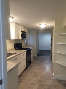 Basement Suite - newly finished - Sept 1st - Utilities included