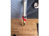 Cricket bat and gloves
