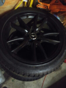 """Mustang PP Brembo Shelby 19"""" Wheels c/w Maxxis Winter Tires"""