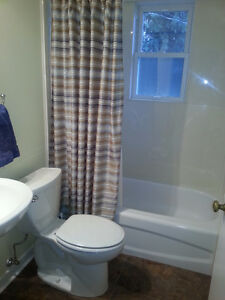 Large 5BR House in Park Allen - Near University - Renovated