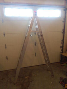 8' folding / 14' extension ladder