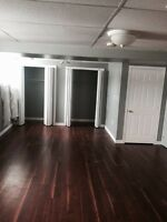 FULLY RENOVATED 2 BEDROOM/ 2 BATHROOM APARTMENT