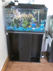 Selling a 30 gal tank with stand & also have some accessories.