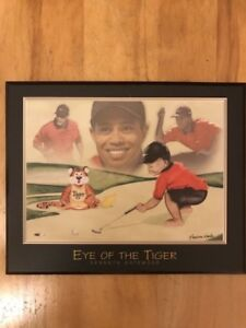 Tiger woods picture 8x10