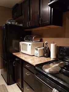 2 Bedroom - Upscale - South London London Ontario image 8