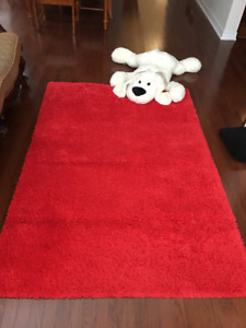 IKEA Area Rug (RED) with fluffy dog - $20