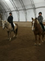Horseback Riding Lessons Available!