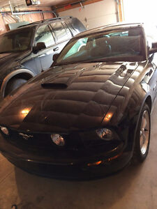2007 Ford Mustang Other