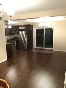EXECUTIVE STYLE APARTMENT FOR RENT St. John's Newfoundland image 4