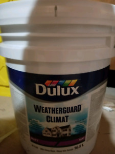 CHEAP PAINT (SEALED)