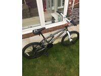 X-Rated Hustle BMX Bike - 20""