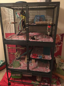 All Living Things rat/ferret cage