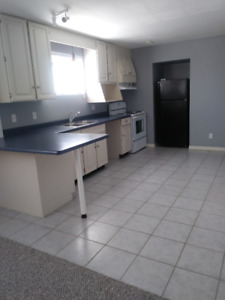 Two bedroom semi lower level for rent