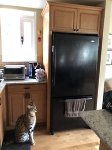 Fridge, stove and dishwasher