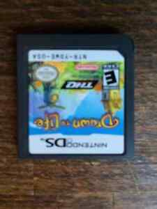 Nintendo DS Drawn to Life Game