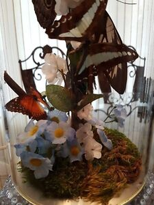 REAL BUTTERFLY TRI-LIGHT LAMP WITH NIGHT LIGHT/Price Drop Cambridge Kitchener Area image 7