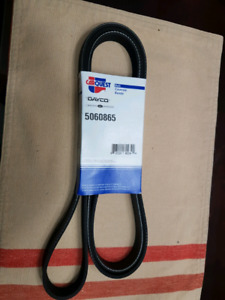 Carquest serp belt new