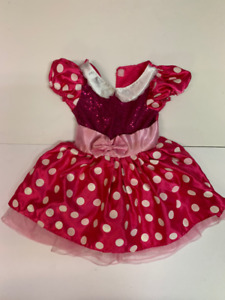 Minnie Mouse and Ladybug Costumes