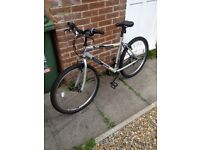 Men's mountain bike 20""