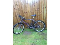Vintage classic Raleigh mountain bike bicycle mens