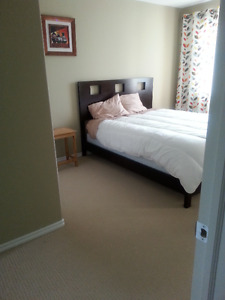 One Large Bedroom