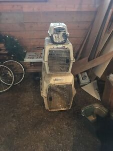 Dog and Cat Kennels