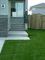 **Professional Sod Installation 15¢ Discount - Summer Special**