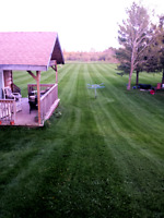 Lawn Care and grass cutting