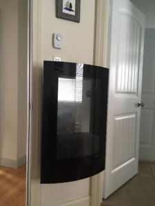 Dimplex 23-In Convex Black Wall Mounted Electric Fireplace