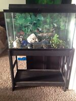 25 gallon fish tank and stand with accessories