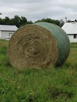 6 bales of grass hay