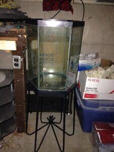 30 Gallons aquarium