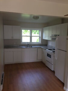 Newly Renovated 1 bedroom Apartment - Downtown Fenelon Falls
