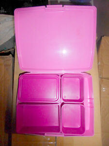 'Laptop Lunch' container Kitchener / Waterloo Kitchener Area image 1