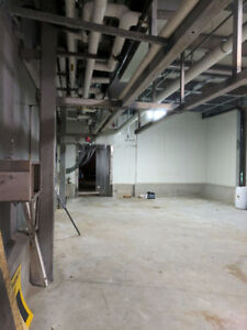 Warehouse space (250, 1100 & 1400 ft' units currently available)