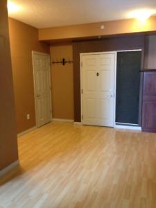 1 BEDROOM PLUS DEN CONDO SUITE FOR RENT (Partial furnishings)