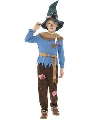 Patchwork Scarecrow Fancy Dress Large 10-12 Book Day Wizard Of Oz Farmyard