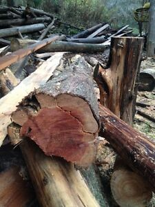 WANTED: Juniper or Cedar logs Cambridge Kitchener Area image 2