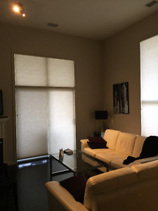 Fully Furnished large 2 ned 2 bath condo for rent including util