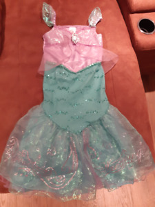 Disney princess dresses and other costumes