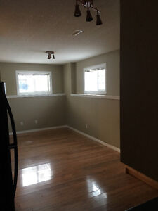 free Feb rent!! Bright high ceilings large basement suite