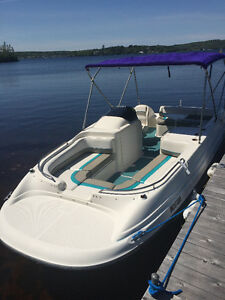 Bayliner Deck Boat-Going into storage, make an offer!
