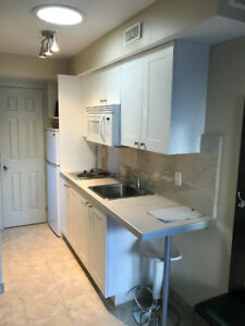 BACHELOR APARTMENT IN PORT CREDIT