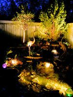 Professional Landscape Lighting by Rhino Designs
