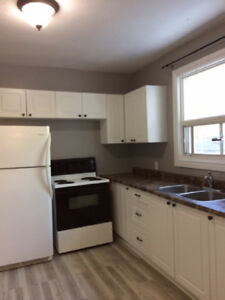 Newly Upgraded, ALL INCL.  3 Bdm/2Bath, Main Apt in Duplex